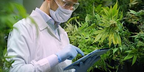 Cannabis System Validation Certificate Program - Sept 11, 2021 tickets
