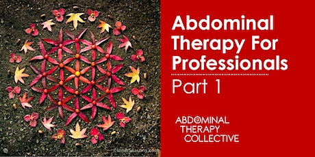 Abdominal Therapy For Professionals: Part One tickets