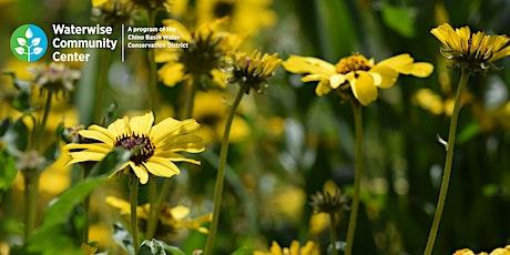 Favorite Plants for Inland Valley Gardens  - Online Workshop tickets