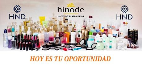 PRESENTACIÓN DE NEGOCIOS HINODE entradas