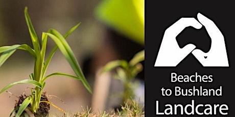 Elanora Bushcare Group Tree Planting tickets