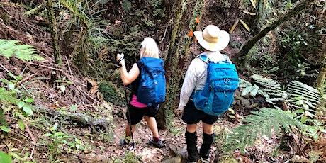 PANZ HIKE: Training Hike at Hunua Ranges (Intermediate-Advanced) tickets