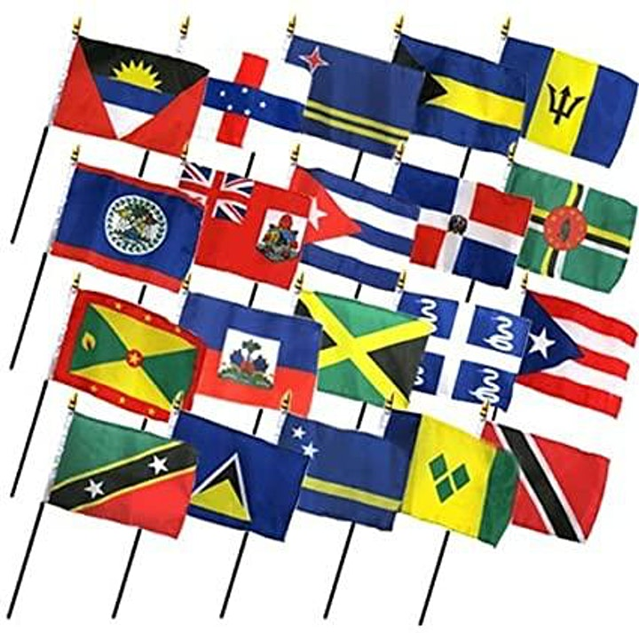 Where Yuh From Caribbean Boat Ride Flag Party image