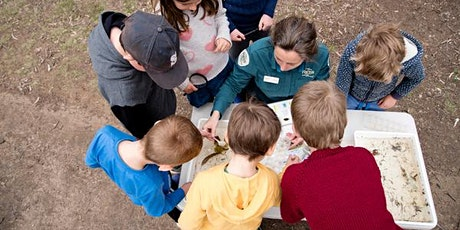 Junior Ranger Feathered Friends  –  Shepparton Regional Park tickets