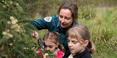 Junior Ranger Wildlife Detective –  Arcadia Streamside Reserve tickets