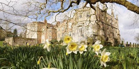 Timed entry to Mottisfont (21 June - 27 June) tickets