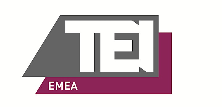 International  Meeting - A  Joint Presentation by NY & EMEA  TEI Chapters image