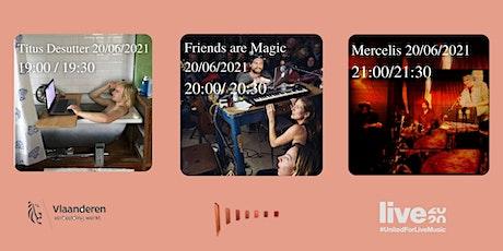 Titus De Sutter/  Friends Are Magic / Mercelis billets