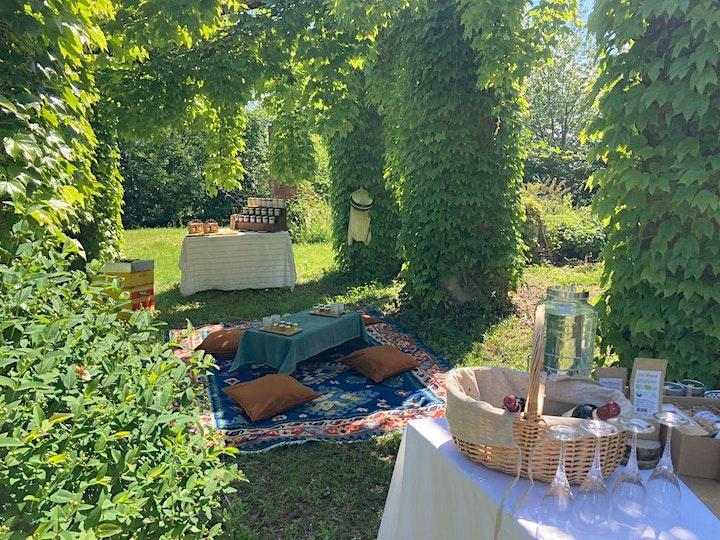 Immagine Amel Experience - Api, Miele e Apicoltura
