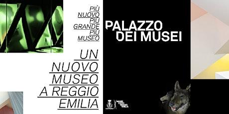 Visite guidate a Palazzo dei Musei biglietti