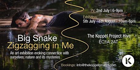 Big Snake Ziggzagging in Me Private View tickets