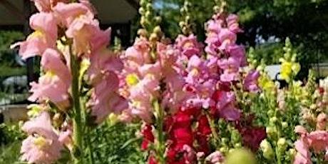 Organic Cut Flower Workshop tickets
