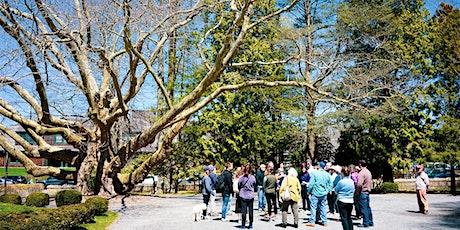 Tree Walk: Trees in the Urban Landscape tickets