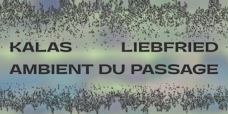 Vernissage(s) de l'exposition Kalas Liebfried - Ambient du Passage billets