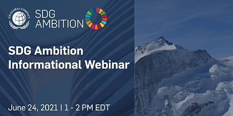 SDG Ambition Informational Webinar tickets