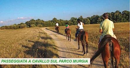 Tour della Murgia a Cavallo biglietti