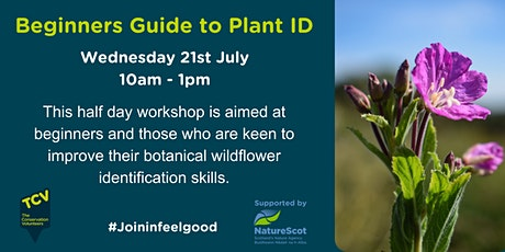Beginners Guide to Plant Identification tickets