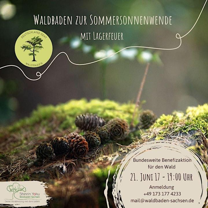 Deutschland geht Waldbaden | Waldbaden zur Sommersonnenwende mit Lagerfeuer: Bild
