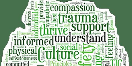 Intro to Trauma Informed Organisations 2021 tickets
