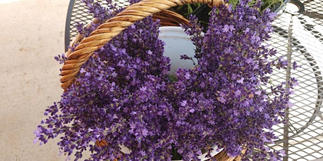 Pick your own lavender tickets