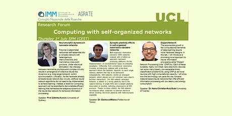 Computing with self-organised networks tickets
