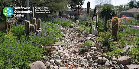 Rainwater Harvesting for Home Landscapes - Online Workshop tickets