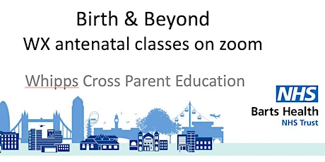 Online Thursday Afternoon 2-week Antenatal Course ( 8 & 15 July 1.30-5pm ) tickets