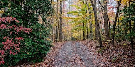 Fall Hike at Minglewood tickets