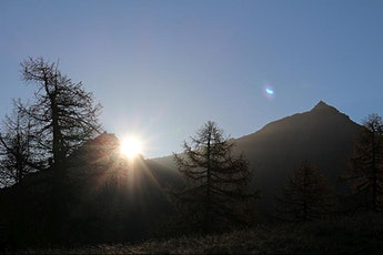 Il risveglio della natura: passeggiata all'alba ….con colazione! biglietti
