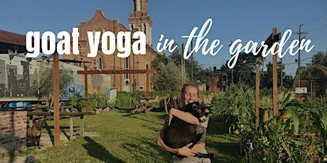 Sunset Goat Yoga @ Paradigm Gardens tickets