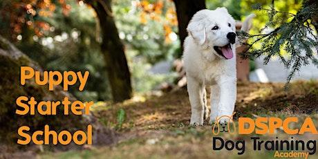 Puppy Starter School, Friday, DSPCA tickets