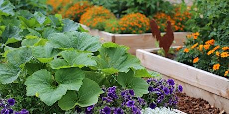 Raised Bed Gardening - Webinar tickets