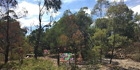 Junior Ranger Bush Walk and Art Activity - Herring Island Park tickets