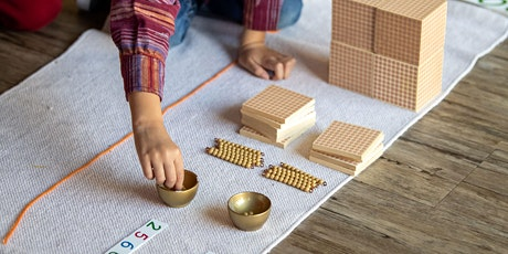 Module 5: Introduction to the Montessori Curriculum tickets