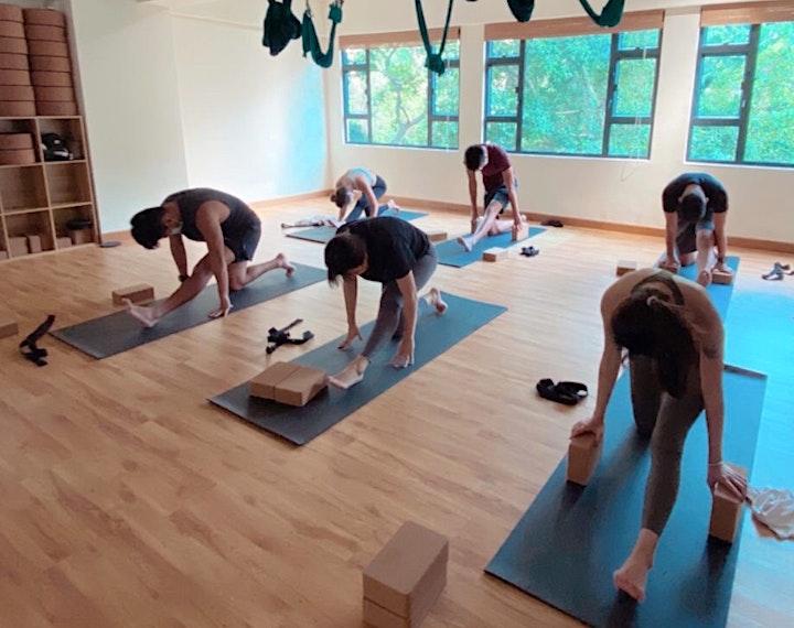 Hatha Yoga For Beginners image