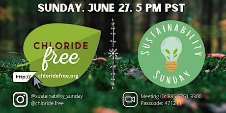 Sustainability Sunday: Chloride Free Foundation tickets