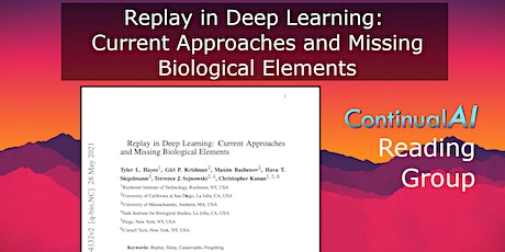 Replay in Deep Learning: Current Approaches and Missing Biological Elements tickets