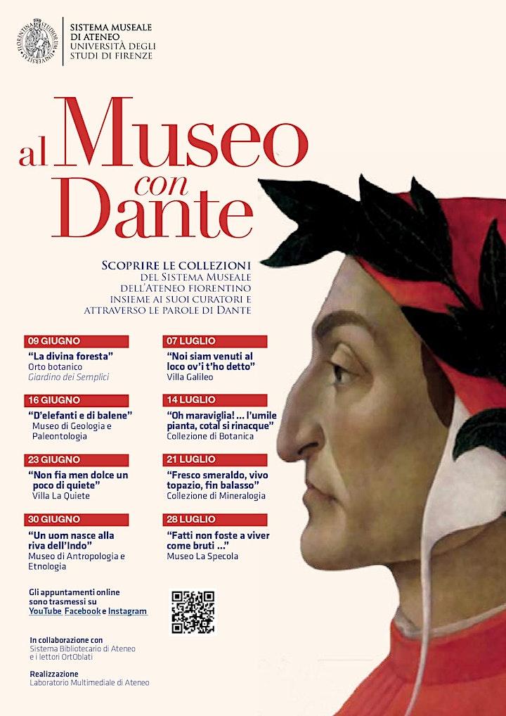 Immagine Al Museo con Dante
