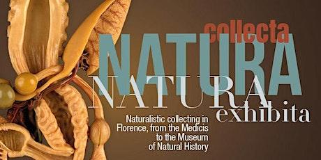 Guided tour Natura Collecta Natura Exhibita biglietti