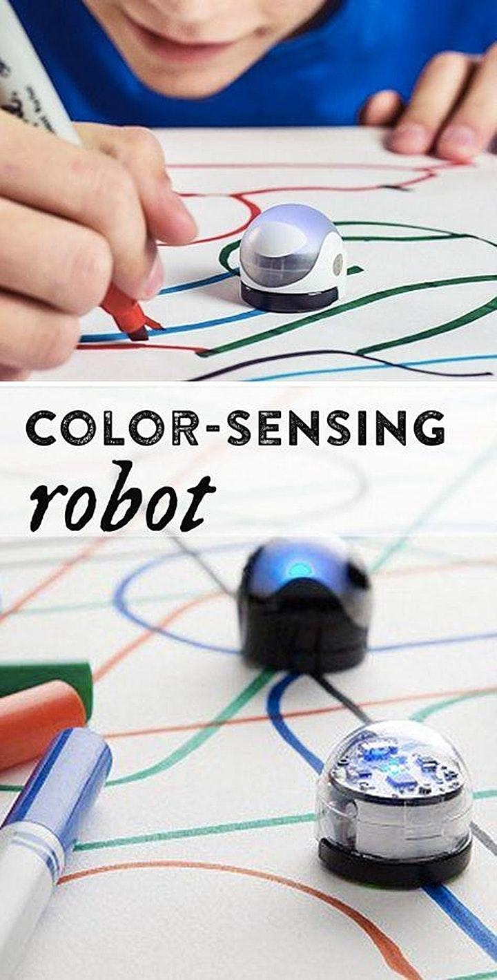 Ozobots (6 -12 yrs) for Home Educators @ Huonville Library image