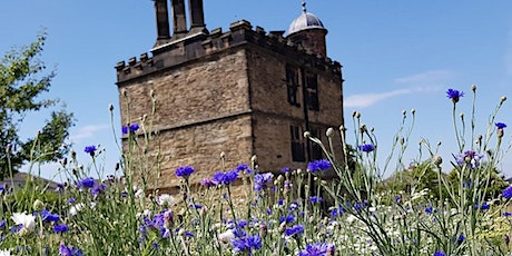 Tudor Open Day and Children's Craft and Trail - 4th July tickets