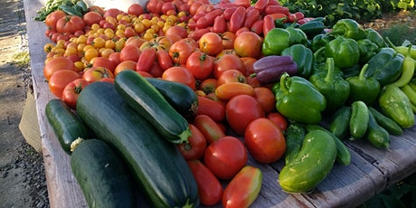"""Farm-to-Table """"Take-Out"""" Community Dinner tickets"""