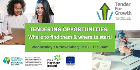 Tendering opportunities: Where to find them and where to start! tickets