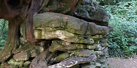 Guided Geology Walk - Tidenham Chase tickets