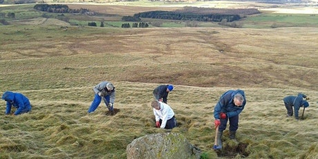 Conservation day at Eycott Hill Nature Reserve tickets