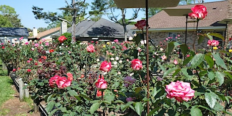 Free Pensacola Rose Show and Sale tickets