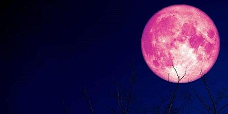 ONLINE Full Moon Breathwork Circle tickets