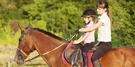 Lake County Veterans and Family Foundation  Free Horseback Lesson tickets
