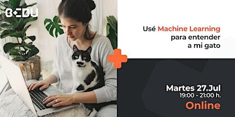 Use Machine Learning para entender a mi gato/Sesiones en vivo. boletos