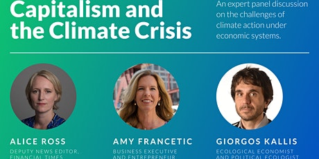 Climate and Capitalism: a live panel discussion with Terra.do tickets